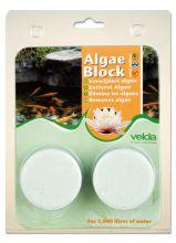 Velda Algea Blocks (2 tabletten)