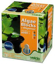 Velda Algea Blocks met Gratis Dispenser