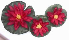 Waterlelie rood set van 3 stuks