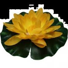 Waterlelie 20 cm geel