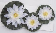 Waterlelie wit set van 3 stuks